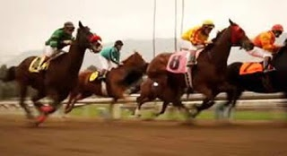 """Canceled HBO series """"luck"""" is anything but fun for network HBO Productions and Stewart was sued by a former American Humane Association. Employees for alleged abuses horses and then covered the abuses during the making of the HBO movie """"luck"""" series."""