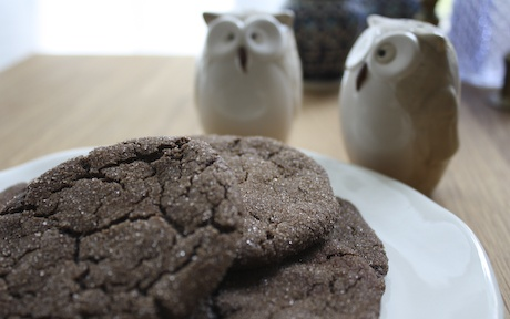 mexican hot chocolate snickerdoodle recipe from the Post Punk Kitchen (crunchy and spicy and sweet; delicious dipped in coffee!)