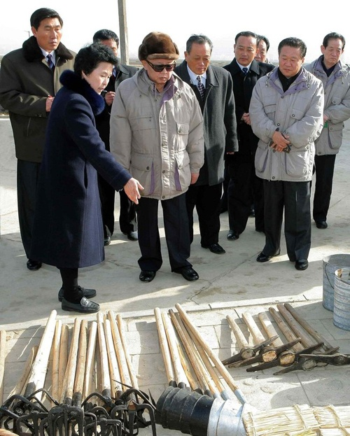 The discreet charm of King Jong Il looking at things. Fabulous!
