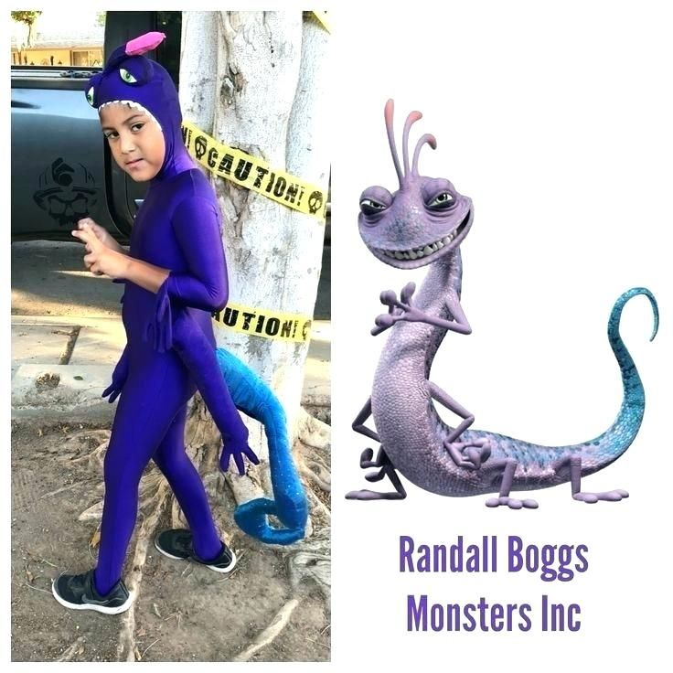 Randall Monsters Inc Costume Google Search Monster Inc Costumes Monsters Inc Halloween Costumes Monsters Inc Halloween
