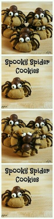 Creepy Spider Cookies for Halloween!