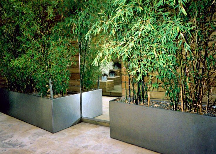 1000 images about contained on pinterest gardens patio for Jardines modernos minimalistas