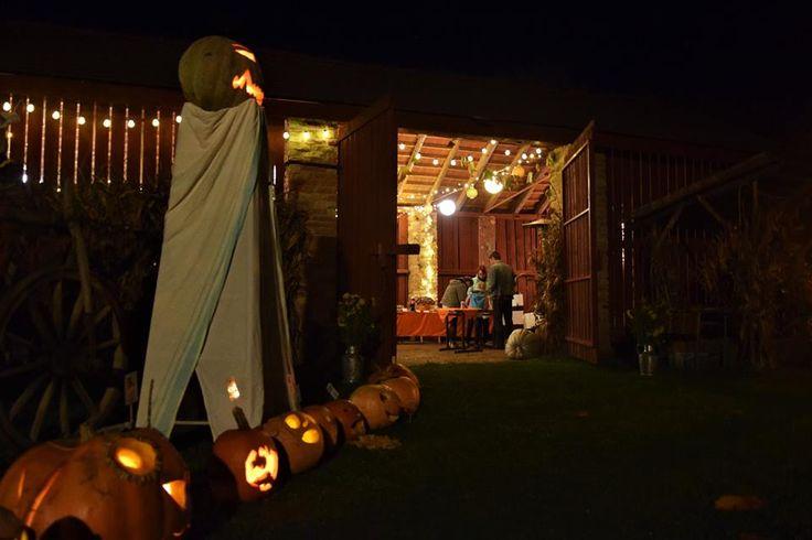 pumpkin lanterns in a row 2