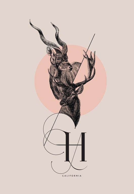 ISADORA Calligraphic Font by Daniel Barba, via Behance.