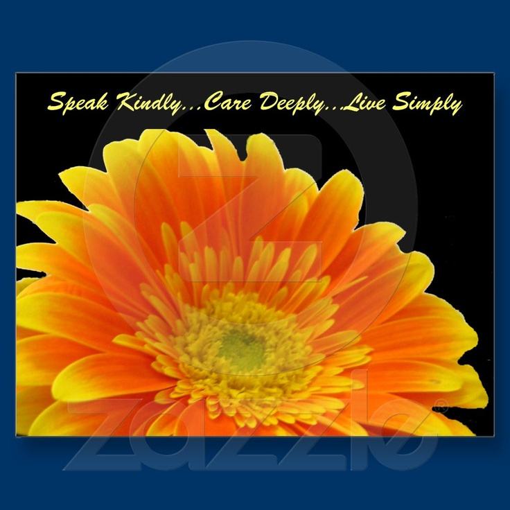 Beautiful Gerbera showcases words of wisdom to live by. Speak Kindly Care Deeply Live Simply