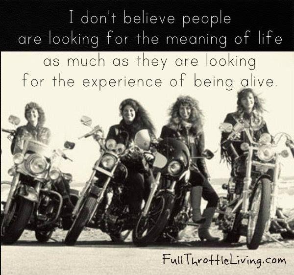 270 Best Girls Ride Too Images On Pinterest Biker Quotes Biker