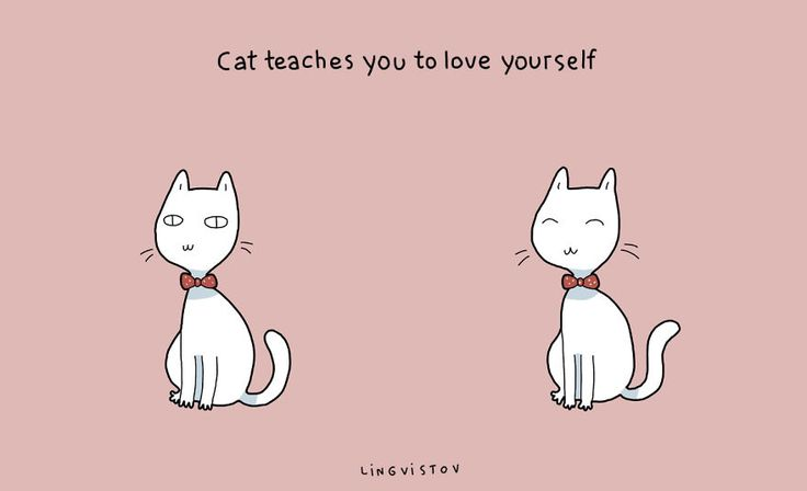 21 Benefits Of Having A Cat