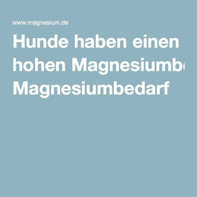 Hunde haben einen hohen Magnesiumbedarf