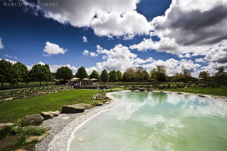 La Bio piscina..senza cloro, con acqua salata che risulta morbida sulla pelle, non regolare e perfettamente integrata nell'ambiente circostante!