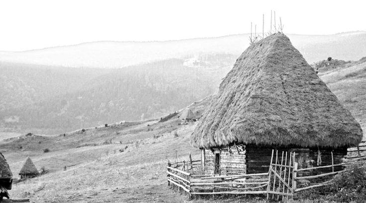 Concurs de arhitectură Țara Moților | Arhitectura 1906