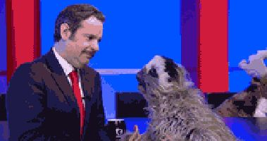 New trending GIF on Giphy. kiss test sloth make up paul f tompkins. Follow Me CooliPhone6Case on Twitter Facebook Google Instagram LinkedIn Blogger Tumblr Youtube