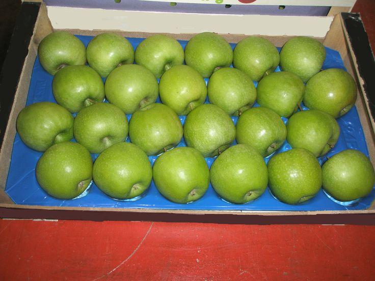 Τα Golden και Golden Chief, γνωστά και αγαπητά στο ευρύ κοινό για την οξύτητα της γεύσης τους. Βρείτε τα σε αφθονία στις αποθήκες μας.    Κεντρικά γραφεία Φιλίππου 10, Έδεσσα Τ.Κ.: 58200 Τηλ: 23810- 23237 Φαξ: 23810- 23159 email: sales@realfruit.gr website: www.realfruit.gr  Παναγίτσα Έδεσσας 1ο χιλ. Παναγίτσας- Έδεσσας τ.κ: 58002 Τηλ: 23810- 34303 Φαξ: 23810- 23159