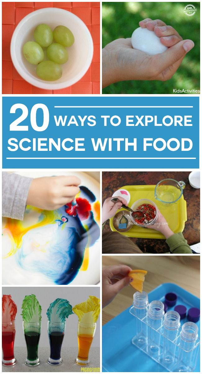 20 Ways to Explore Science With Food