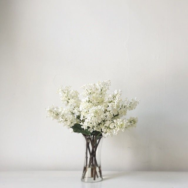 ARRANGEMENT: | White Lilacs with De-Leafed Stems + Cylinder Glass Vase.