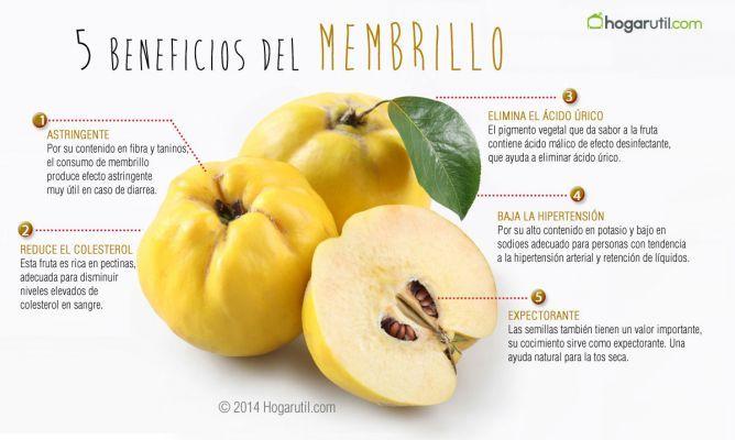 Membrillo, fruta digestiva y astringente - Hogarutil