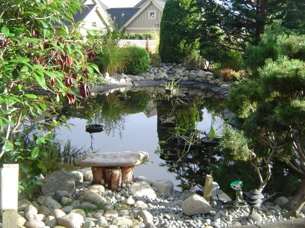 28 best bassin images on Pinterest Garden fountains, Ponds and