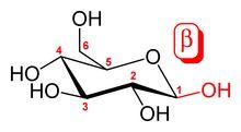 β-Glucans/Beta-Glucans-- comprise a group of β-D-glucose polysaccharides naturally occurring in the cell walls of cereals, yeast, bacteria, & fungi, with significantly differing physicochemical properties dependent on source. Typically, β-glucans form a linear backbone with 1-3 β-glycosidic bonds but vary with respect to molecular mass, solubility, viscosity, branching structure, & gelation properties, causing diverse physiological effects in animals.