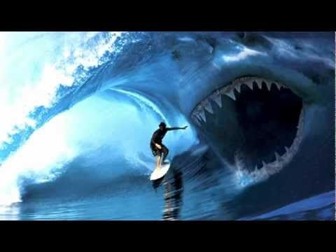 Megalodon shark | Download Tribute To The Megalodon Shark video