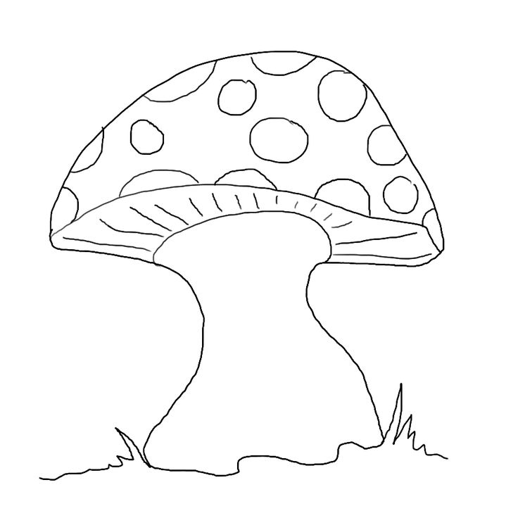 Fairy And Mushroom Coloring Pages
