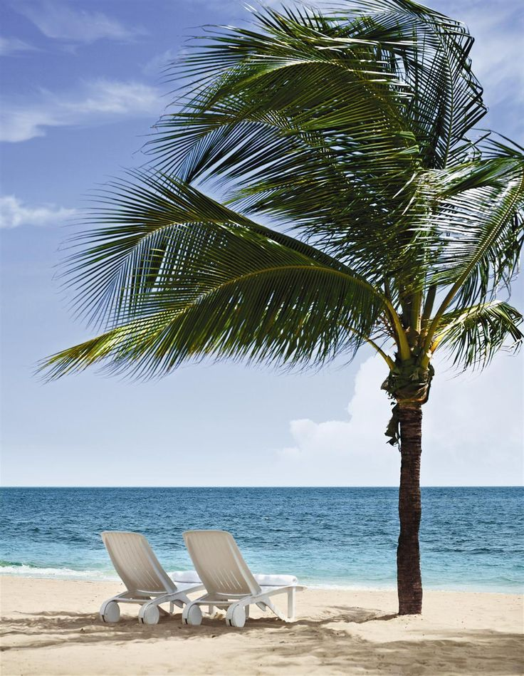 121 best jamaica destination weddings and honeymoons for Best beach vacations in us for couples