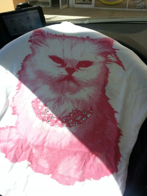 I bought this sweatshirts , remembering my cat looks just Marshmallow ♥♥♥♥♥ te extrano mucho :(