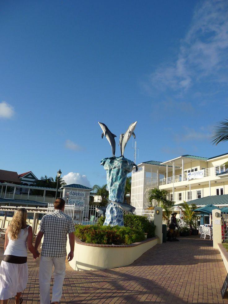 Freeport Bahamas Dolphin centre