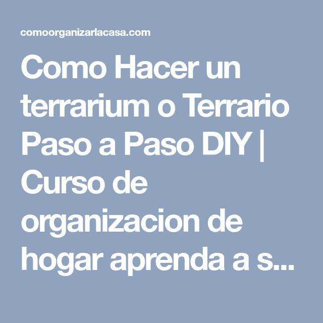 Como Hacer un terrarium o Terrario Paso a Paso DIY | Curso de organizacion de hogar aprenda a ser organizado en poco tiempo #terrarios