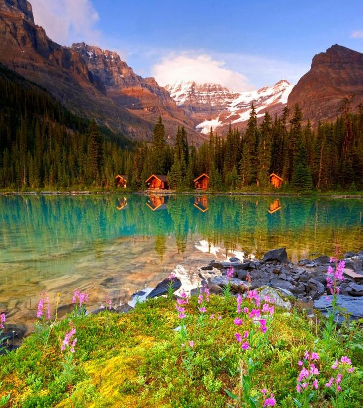 Cabanes au bord d 39 un lac au canada plein les yeux for Annonceur maison du canadien