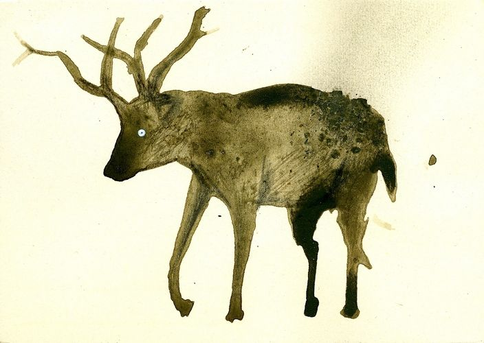 DENIS RIVA - cervo