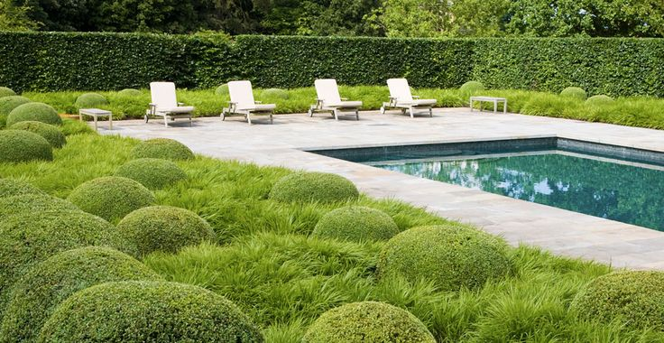 Hampshire garden pool surrounded by grasses and clipped boxwoods. Designed by Tom Stuart-Smith. Photo by Andrew Lawson.