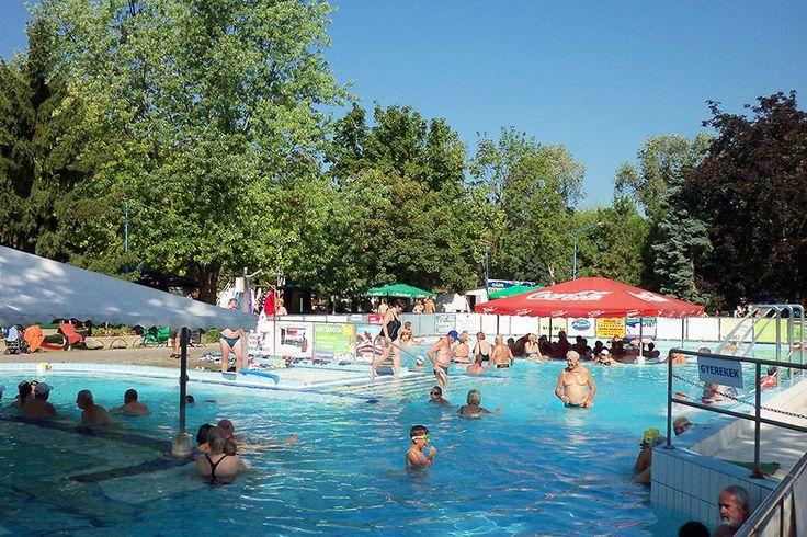 A Duna partján csodálatos zöldövezetben kialakított Termálfürdő Leányfalu árnyat adó ősfákkal és nagy, szabad zöldterületekkel várja a napimádókat és a fürdőzőket.