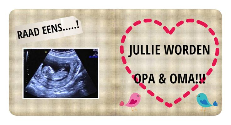 Aankondiging zwangerschap, super origineel met een boekje van karton!