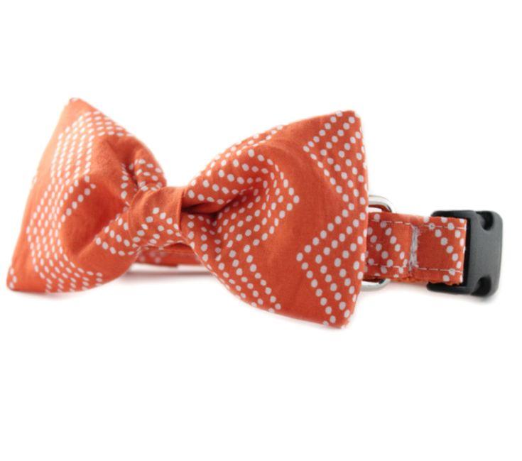 Orange Bow Tie Dog Collar - Orange Splash Chevron Bow Tie Dog Collar - Orange White Chevron Tiny Dot Bowtie Dog Collar- orange bow tie