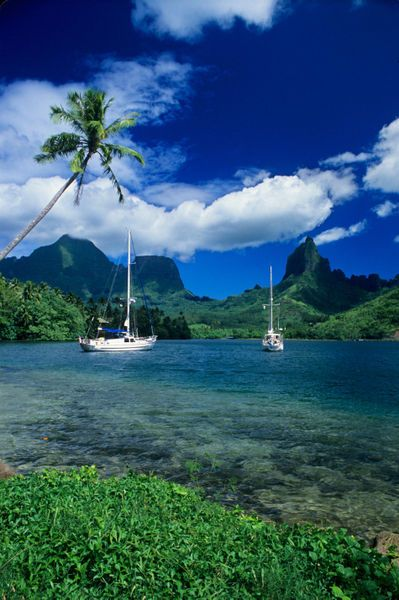Private yachts anchored in Opunohu Bay on the island of Moorea in the Society islands of French Polynesia.