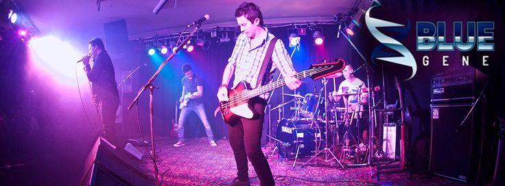 Rosie O'Grady's Northbridge, Perth, Live Music, Sport, Late Night, Entertainment