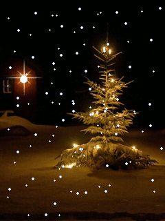 Sapin de Noël animé gratuit - Nuit de Noel                                                                                                                                                      Plus