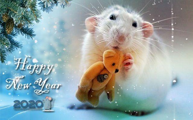 Картинки с новым годом 2020 красивые скачать бесплатно на телефон с мышкой