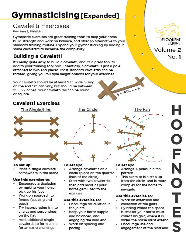 Volume 2, No. 1 expands on the trot pole gymnastic exercises provided in HFN 1.3, and ups the complexity by adding some cavalettis. It provides some great exercises for cavalettis into your training routine. This HoofNote is based on a larger article on Gymnasticising your horse, featured in Issue 2, Athleticism. Download the PDF version here: http://wp.me/p4GGrs-tb