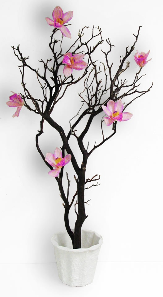 50 best branches trees limbs images on pinterest for Floral arrangements with branches