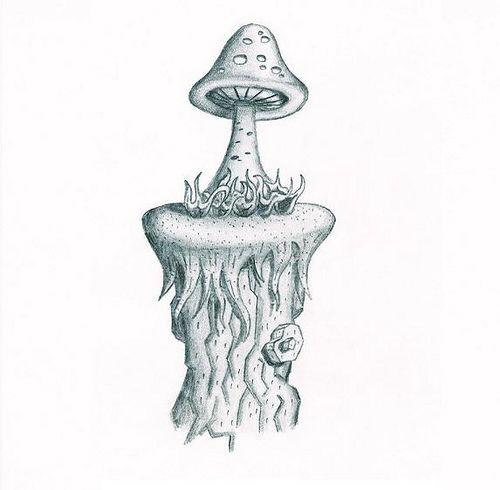mushroom drawing by Original Identification, via Flickr