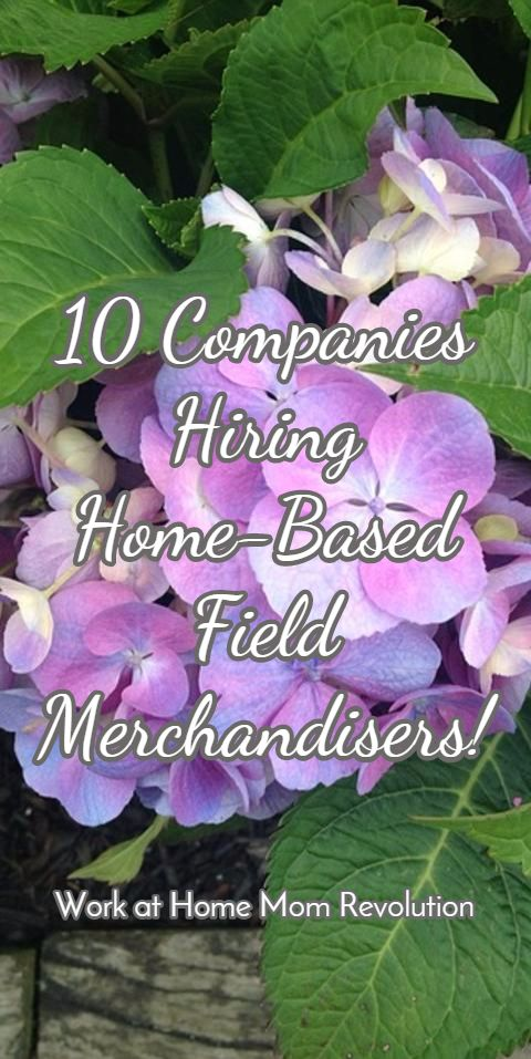 Best 25+ Merchandising companies ideas on Pinterest - wholesale merchandiser sample resume