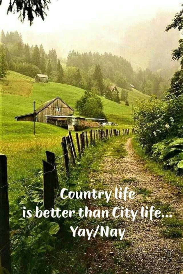 country life is better than city life