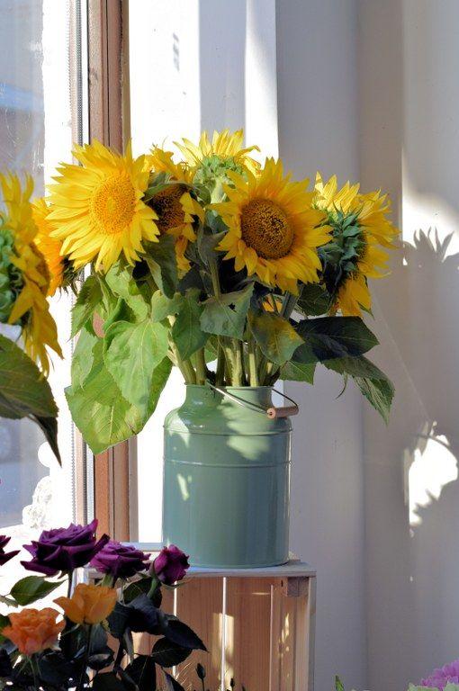 Blue Daisy project #flowershop #flowers
