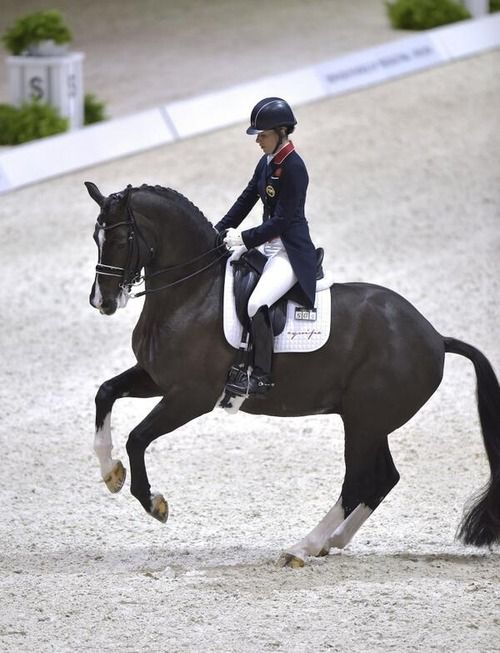Charlotte Dujardin and Valegro. Poetry in Motion from the Professors of Dressage.