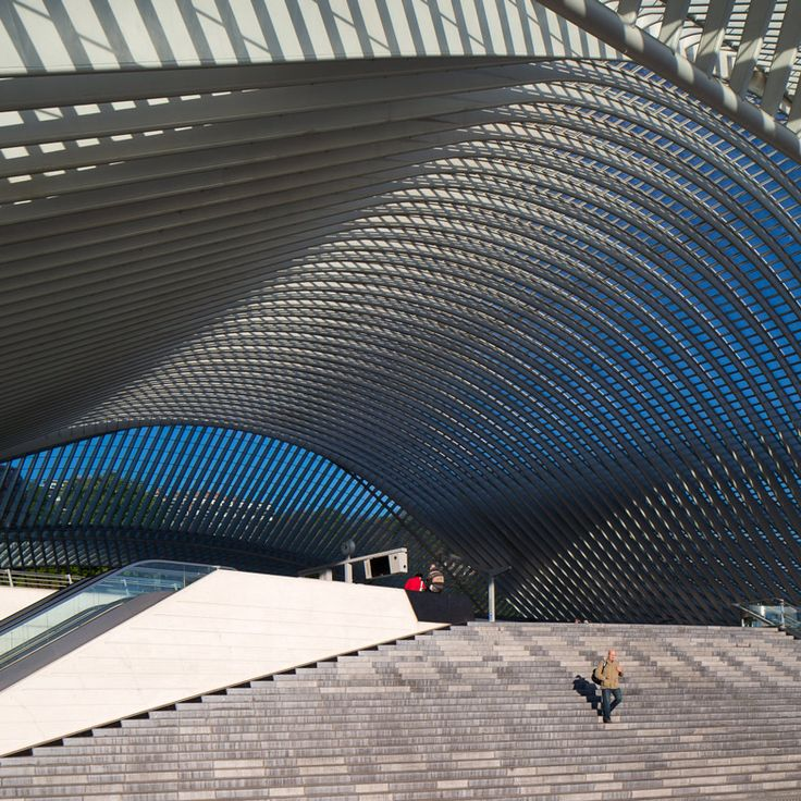 Calatrava's Liège-Guillemins Station in new photographs by Luke Hayes
