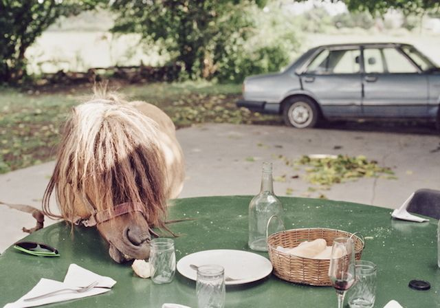 Sophie Ebrard Photography7