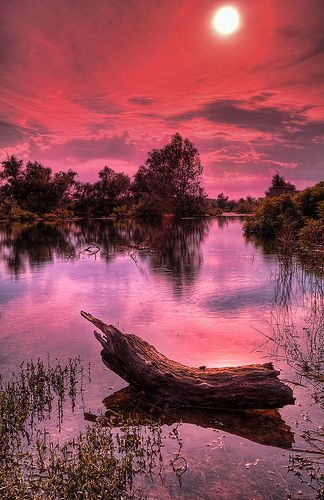 Beautiful sunset scene over the river Danube #BeautifulNature #NaturePhotography #Nature #Photography #Sunsets #Reflections