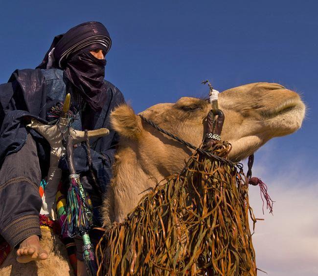 tuaregues - Pesquisa Google