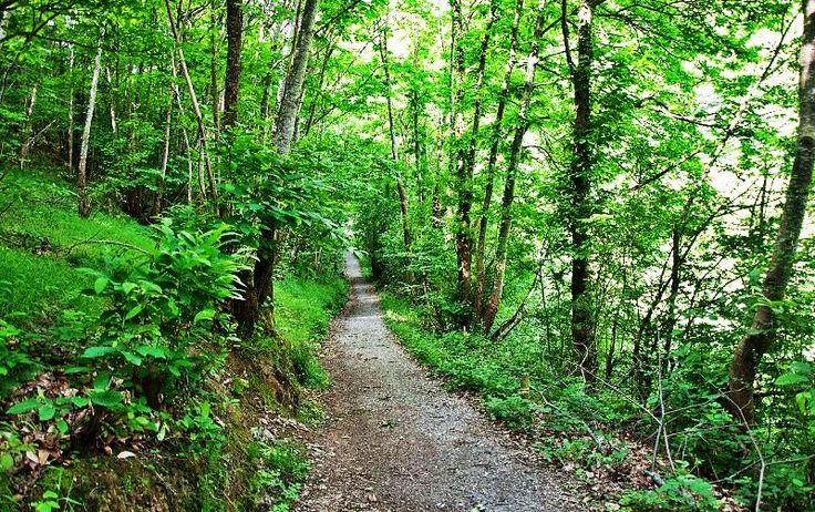 Asturias: Senda Verde Foyoso
