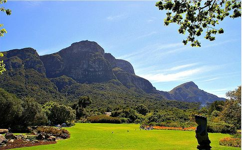 #1 #1000thingstodo #capetown Visit the Kirstenbosch National Botanical Garden   Explore the extraordinarily rich and diverse flora, your whole world will change at Kirstenbosch.   I <3 Cape Town